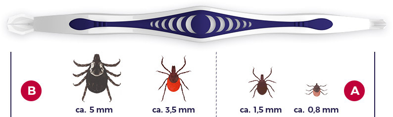 Tick Remover - graphics